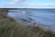 Beach at Whitelinks Bay