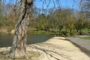 Ward Jackson Park Pond