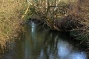 River Thrushel from Wrixhill Bridge