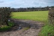 Home Farm View