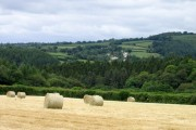 View across Tamar Valley to Tutwell