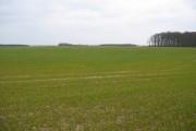 Farmland SE Of Burton Agnes