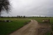 Danby Wiske. Farm track to North Farm.