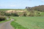 View across farmland towards Shelving Wood