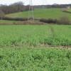 View across farmland towards Greenacre