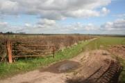 Farmland off Woodcoates Road