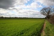 Fledborough farmland