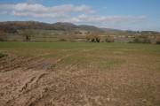Farmland near Camer's Green