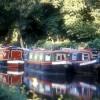 Narrowboats on River Wey at Farncombe