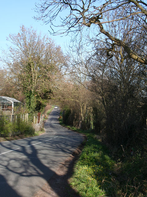 Springtime on Gresty Lane
