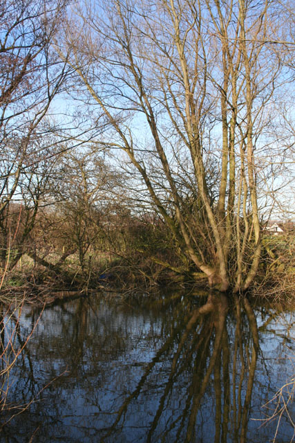 Reflections in mere