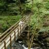 Ardkinglas Gardens, near Cairndow  on Loch Fyne