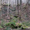 Wharncliffe Woods Water Course
