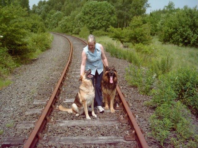 Disused Weardale railway line