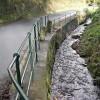 A Roadside Stream