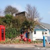 Icons: Phone Box, Anchor, Palm Tree, Molly Malone's