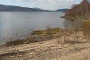 Beach, north side of Loch Rannoch