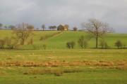 Grazing land near Cantsfield