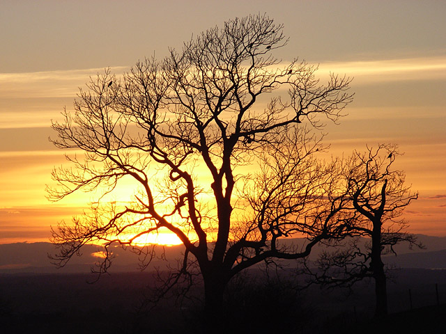 Albyfield sunset