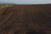 Arable farmland above Newbiggin