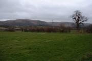 Farmland near Caersws