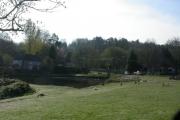 Village Pond, Hammer