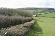 Leckwith  Farmland
