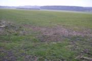 Farmland near Broadmere