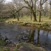 River Plym near Dunstone