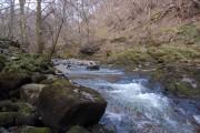 Afon Nedd Fechan