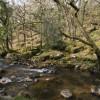 River Plym and Cadworthy Wood