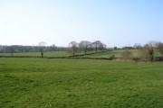 Fields near Browns Lane