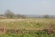 Farmland north of Middle Barton