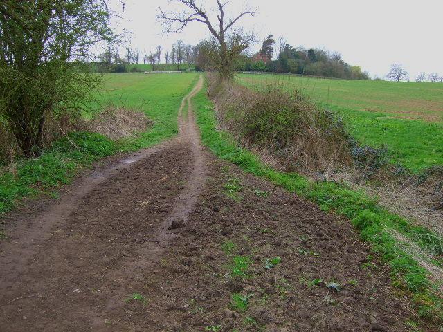 Bridleway to Ingleby Toft