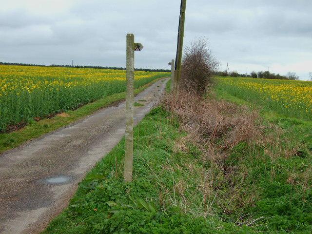 Wood lane footpaths