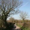 Lane leading to The Lea