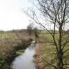 Lonco Brook