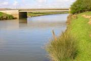 Blackwall Bridge