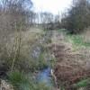 Pestfurlong Moss