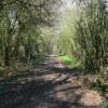 A leafy footpath near Thurcaston, Leicester.