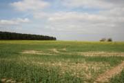 Hungram farmland