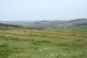 Brushford: by Higher Allshire Farm
