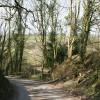 Dulverton: lane near Anstey Farm