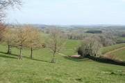 Dulverton: near Ridlers