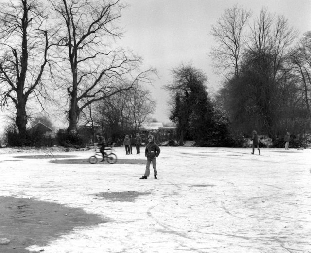 Elmore Pond, Chipstead, Surrey