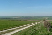 Wold Newton taken from track NE of Thwing