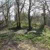 Motte at Castlebythe