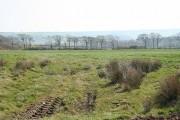 Knowstone: Owlaborough Moor