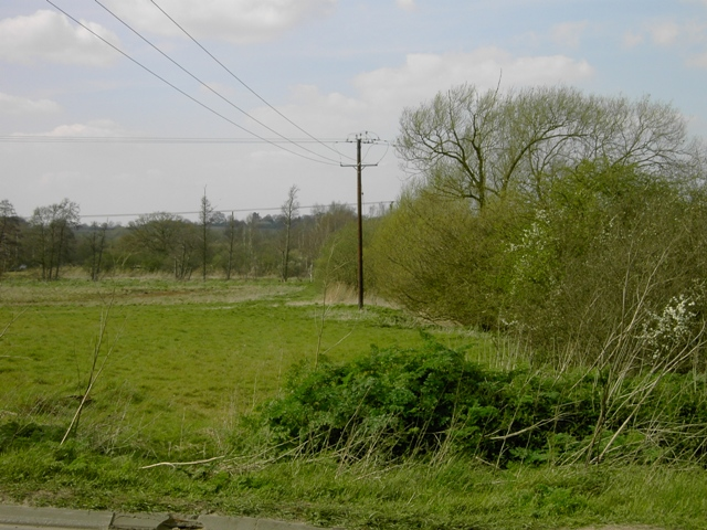 Disused farmland