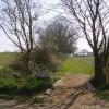 Inviting footpath